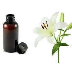 Lily Oil