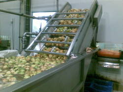 Fruit Processing Plant - Pulp, Juice, Jam