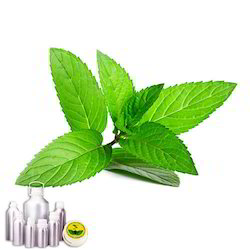 Pepper Mint Oil