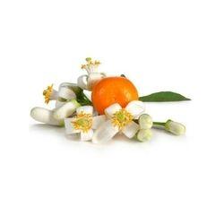 Orange Peel Oil