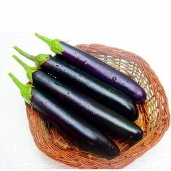 Brinjal Seed - Raja ( Hybrid)