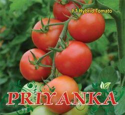 Priyanka  F-1 Hybrid Tomato Seed
