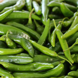 Green Chilli Oleoresin (6.6 % Capsaicin)