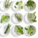 Pharma Herbal Franchise