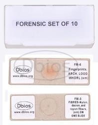 Forensic Microscopic Slides