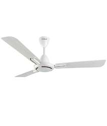 Ambrose Ceiling Fan (Havells)
