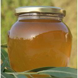 Madhu Honey