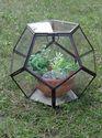 Octagonal Grow House
