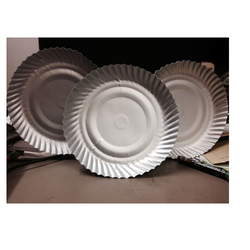 Disposable Paper Plates  sc 1 st  Royal Paper Industries & Disposable Plates - Disposable Paper Plates Manufacturer from Delhi