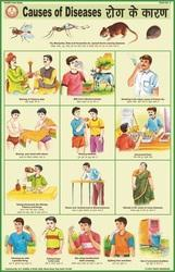Causes Of Diseases For Health & Hygiene Chart