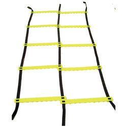Dual Agility Ladder
