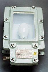 125 W Flameproof HPMV Bulkhead Fittings