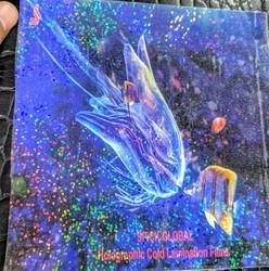 Holographic Transparent Cold Lamination Film