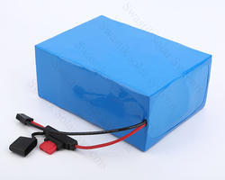 24 Volt 50 Ah Lithium Ion Battery