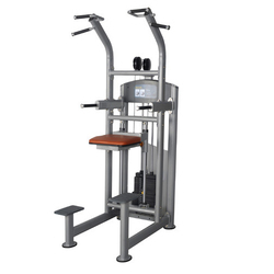 Chin/ Dip Assisted Fitness Machine