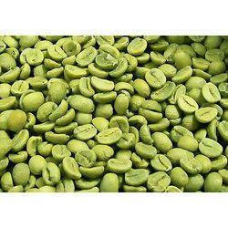Organic Green Coffee Bean