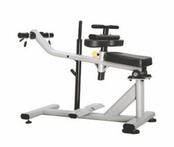 ES - 029 Seated Calf Machine