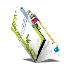 Multicolor Offset Printing Services