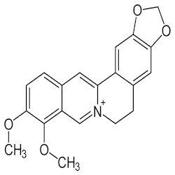 Procyclidine Without Prescription