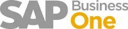 SAP & ERP Implementation Service