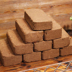 Coco Peat for Nursery