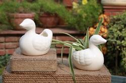 Big Ceramic Duck Planter