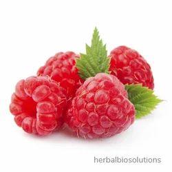 Raspberry Extracts