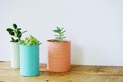 Colored Planters