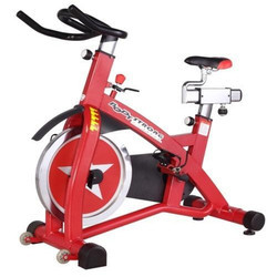 Commercial Spine Bike Cycle