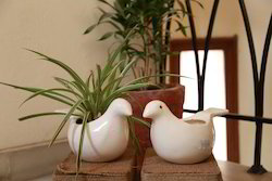 Ceramic Bird Planter