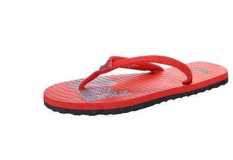 376a72078 Men Sandals And Flip Flops - Miama NG DP Unisex Flip Flops Retailer ...