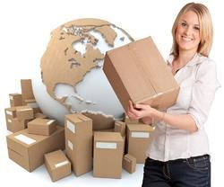 Express International Courier Services