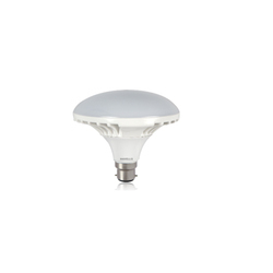 Havells LED Florid Lamp