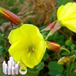 Evening Prime Rose Oil