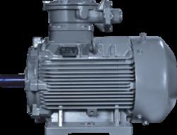 Bharat Bijlee IE2 Flame Proof Motors