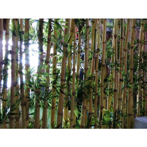 Artificial Bamboo Fencing Manufacturer from Lucknow