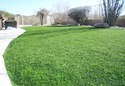 High Quality Synthetic Artificial Grass