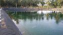Black Film Pond Liner