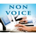 Offline Non Voice BPO Projects