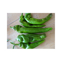Chilli Hot Pepper Seed