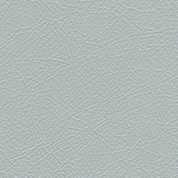 Pewter Colored Leather