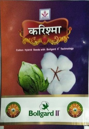 Agriculture Cotton Seeds