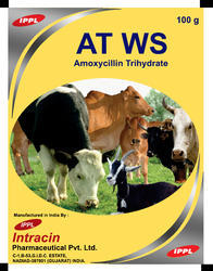 Amoxycillin Trihydrate