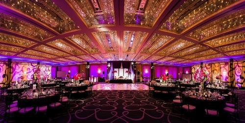 Wedding decoration theme parties service provider from lucknow wedding decoration junglespirit Images