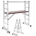 Scaffold Ladder