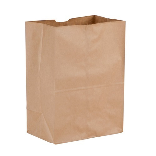 e55de18cedb Paper Grocery Bags - Paper Grocery Bag Manufacturer from Vadodara