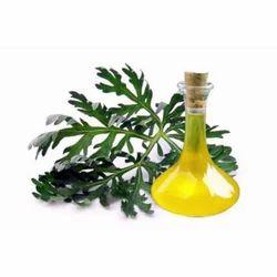 Wormwood Oil