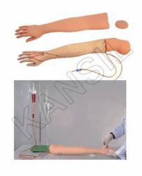 Multi Functional I.V. Training Arm For Medical Model