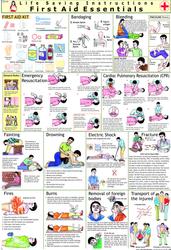 First Aid Chart