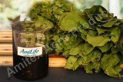 AmiLife Organic Soya Lecithin